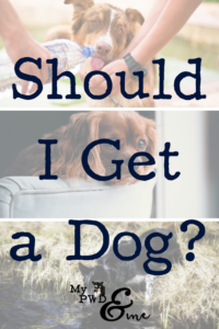 Should I Get a Dog - My PWD and Me
