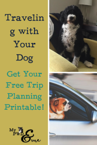 Traveling with Your Dog - My PWD and Me