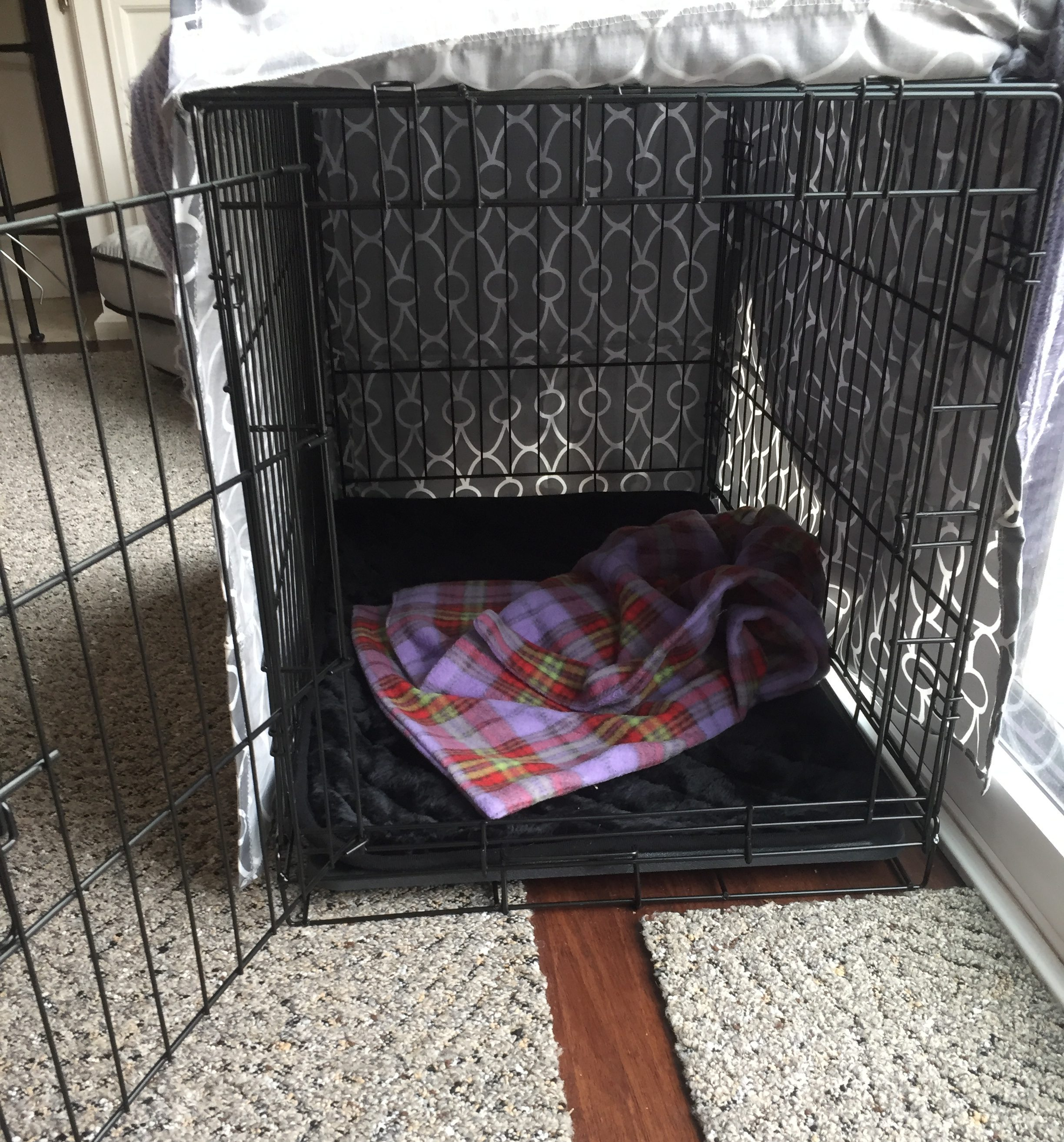 Crate Training Your Puppy - My PWD and Me