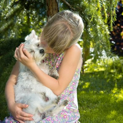 Puppy Series: Socializing Your Puppy