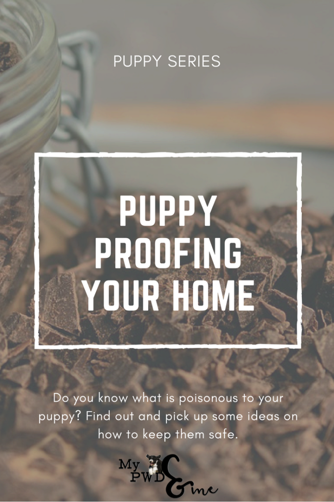 Puppy Series: How to Puppy Proof Your Home - My PWD and Me